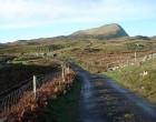 clare-island-landscape-road