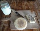 sheeps-cheese-yoghurt-kitchen