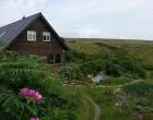 house-garden-flowers-centre