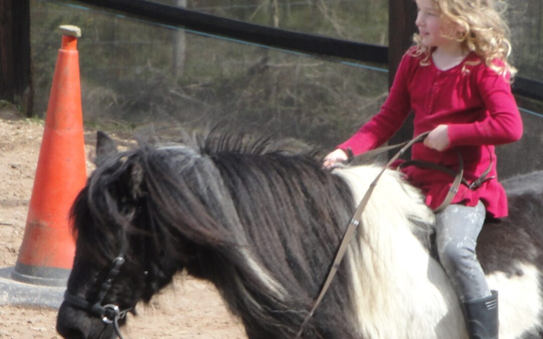 Kids and Ponies, how (not) to get your kids riding